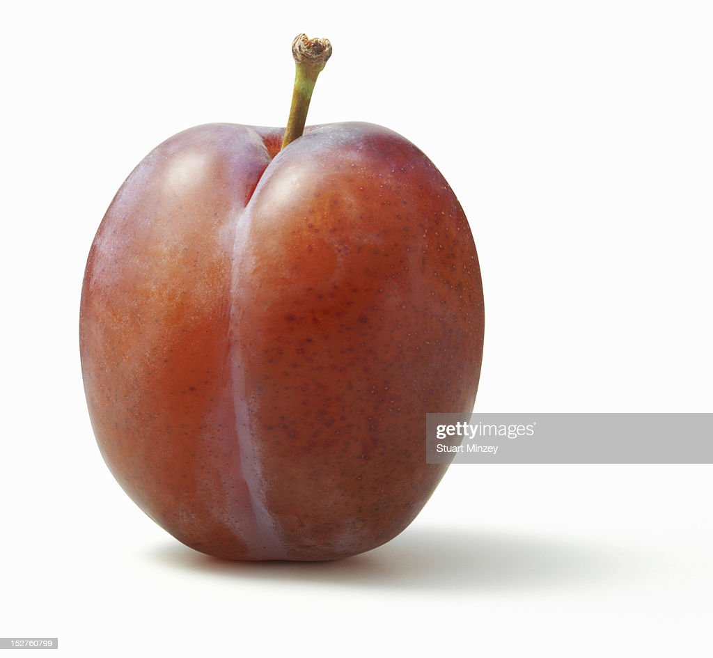 Plum on white background