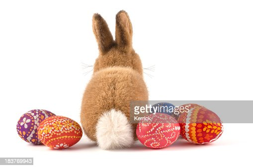 Plush Easter bunny and decorated Easter eggs
