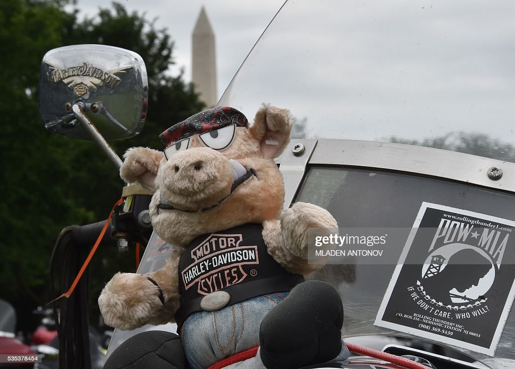 A plush toy sits on a motorbike during the annual Rolling Thunder 'Ride for Freedom' parade ahead of Memorial Day in Washington, DC, on May 29, 2016. / AFP / MLADEN