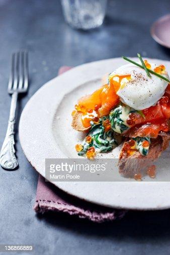poached egg on wild salmon : Stock Photo