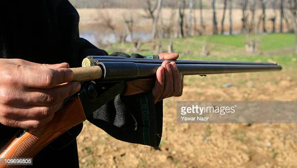 A poacher loads a bullet in a gun before hunting migratory birds in a wetland on March 01 2011 in Indian administered Kashmir India Poaching of...