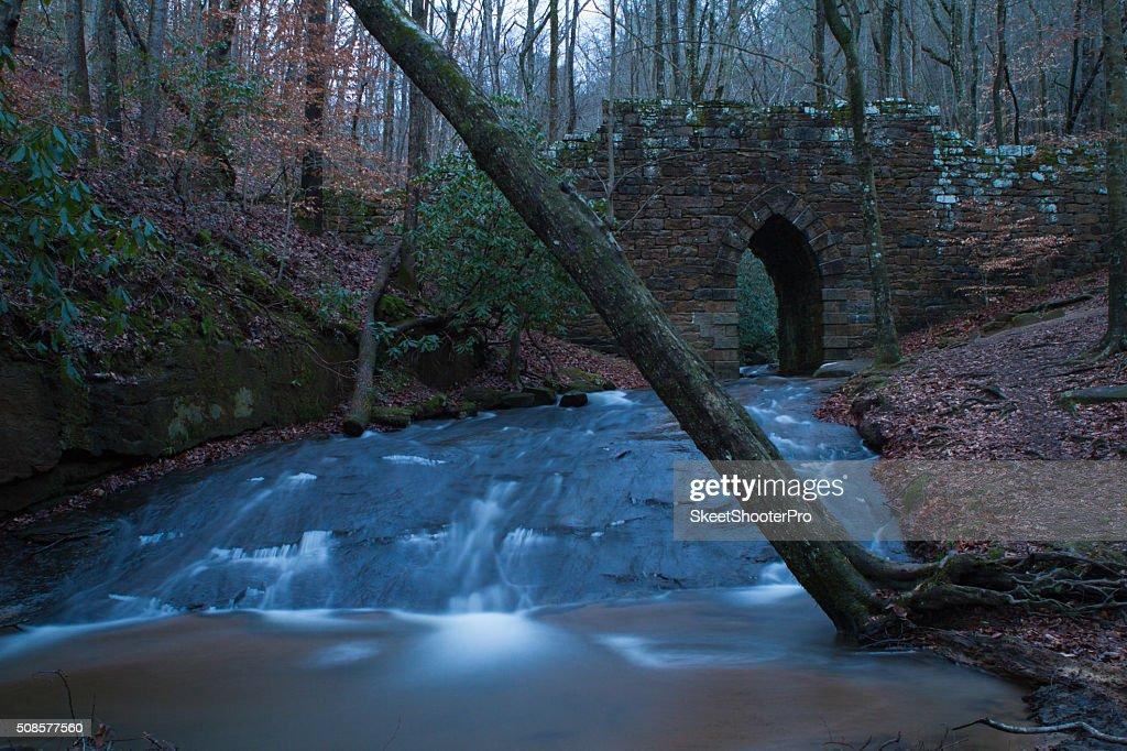 Poinsett-Brücke : Stock-Foto