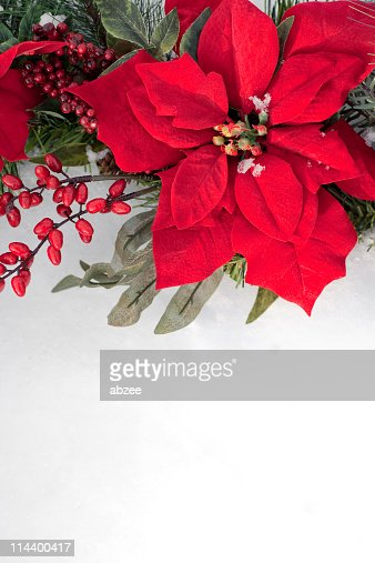 Poinsettia and berry christmas wreath against snow background
