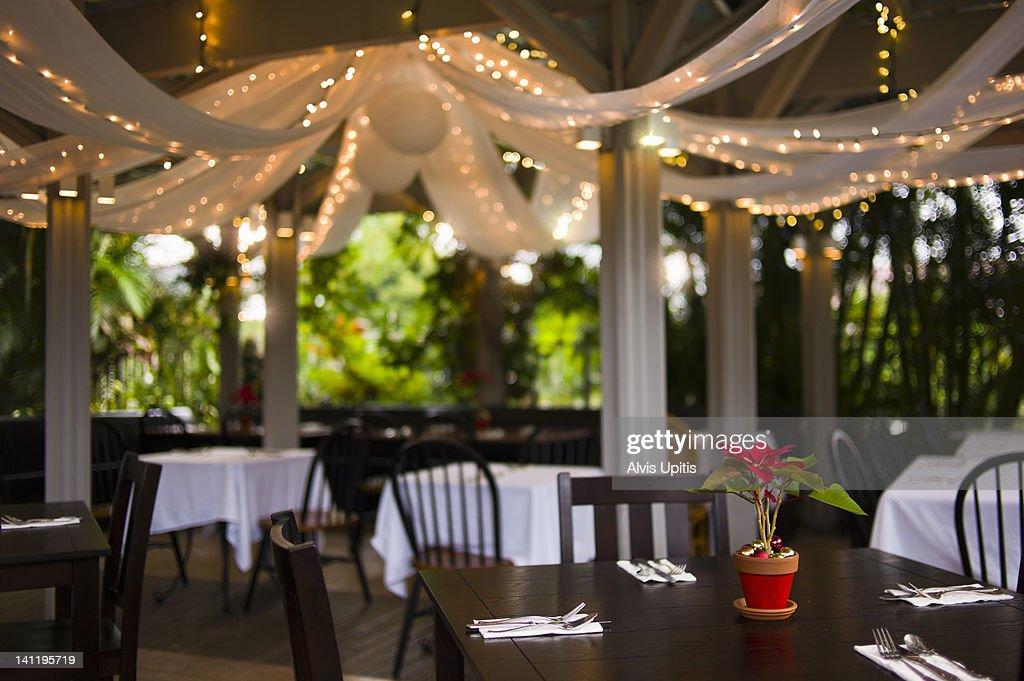 Poinsettia on restuarant dining table. : Stock Photo