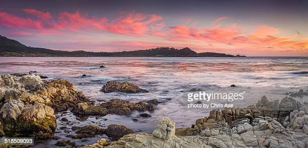 Point Lobos Pink and Blue - Carmel, CA
