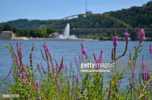 Point State Park, Pittsburgh, PA. USA : Stockfoto