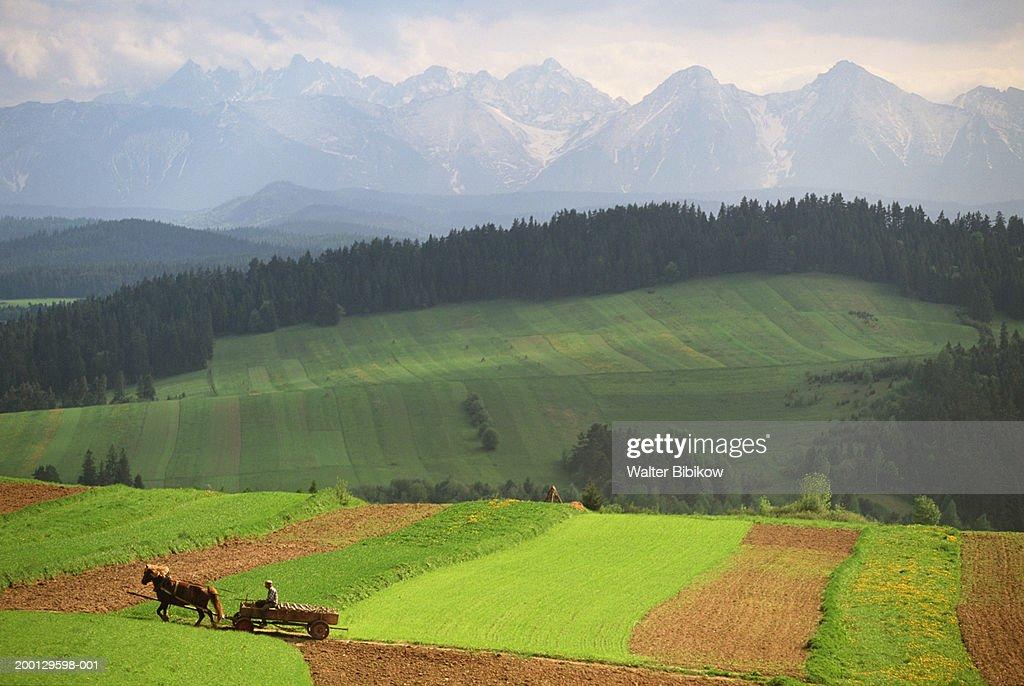 Poland, Carpathians, Tatra Mountains, The Pienny : Stock Photo