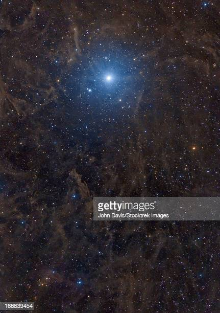 Polaris, also known as the north star, is surrounded by large complex dust structures, known as molecular clouds or galactic cirrus.