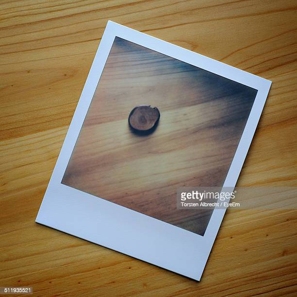 A Polaroid picture of a chestnut