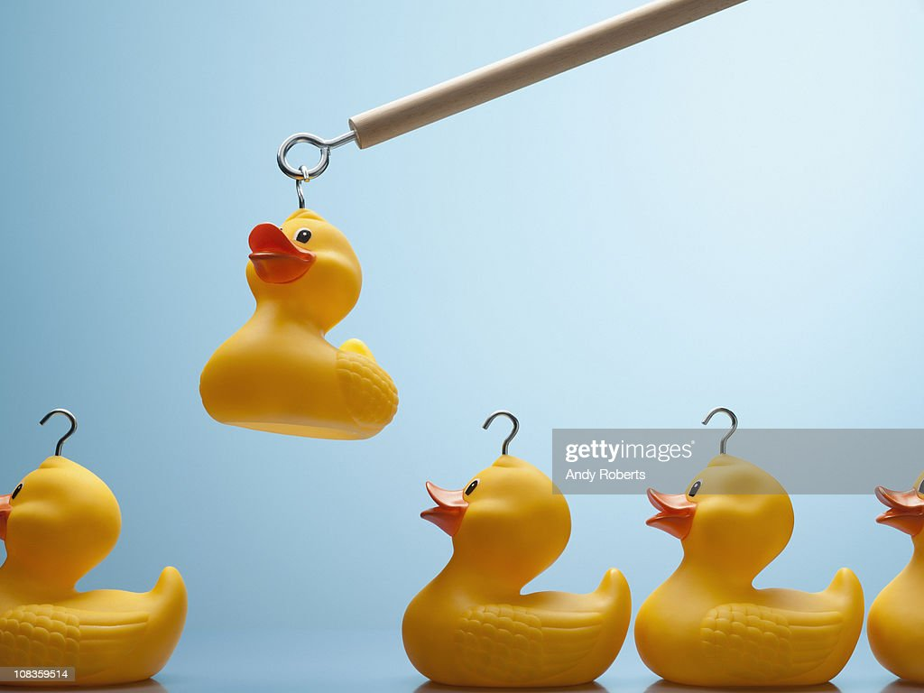 Pole lifting rubber duck with hook in its head : Stock Photo