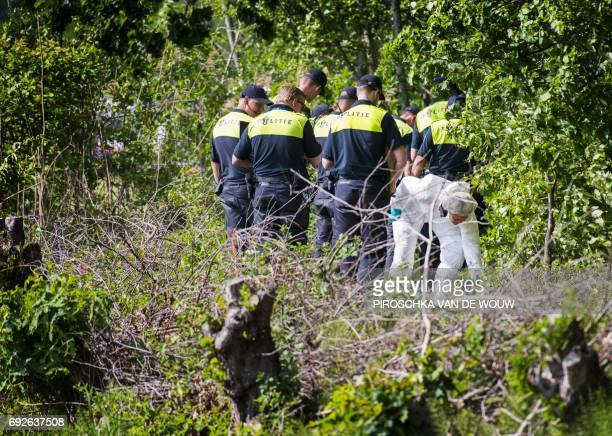 Police and forensics investigate near the spot where 14 year old Romy Nieuwburg was found in Achterveld on 3 June 2017 The body of 14 year old Romy...