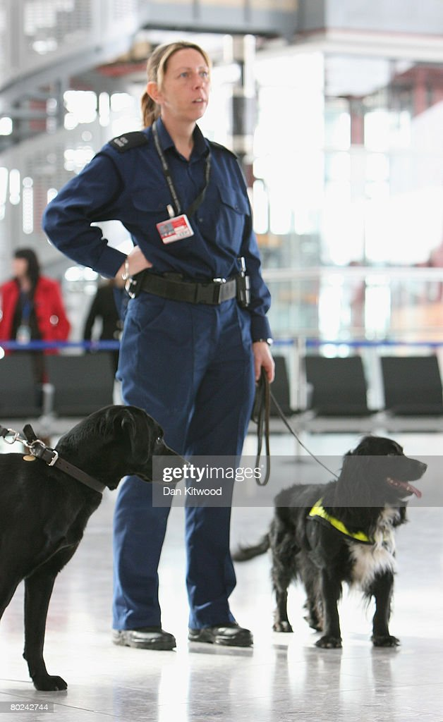 Police and sniffer dogs patrol the new Terminal 5 at Heathrow before it's official opening on March 14, 2008 in London, England.