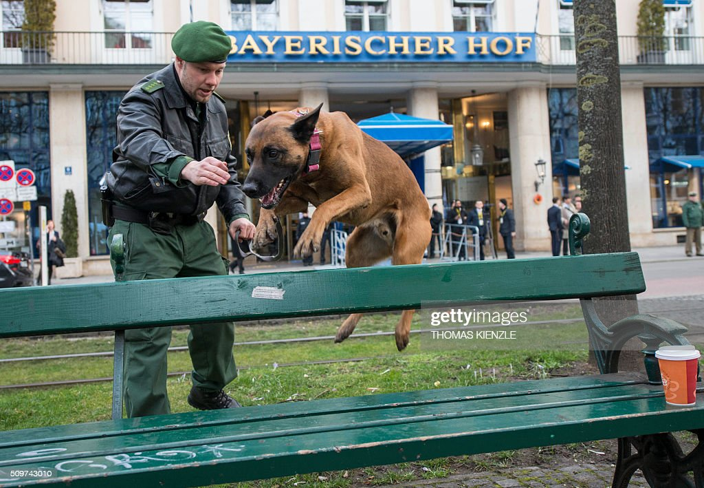Police dog Kanis jumps over a park bench as security measures are executed in front of the Bayerischer Hof hotel, venue of the 52nd Munich Security Conference (MSC), prior to the start of the conference in Munich, southern Germany, on February 12, 2016. The Munich Security Conference takes place here until February 14, 2016. / AFP / THOMAS KIENZLE
