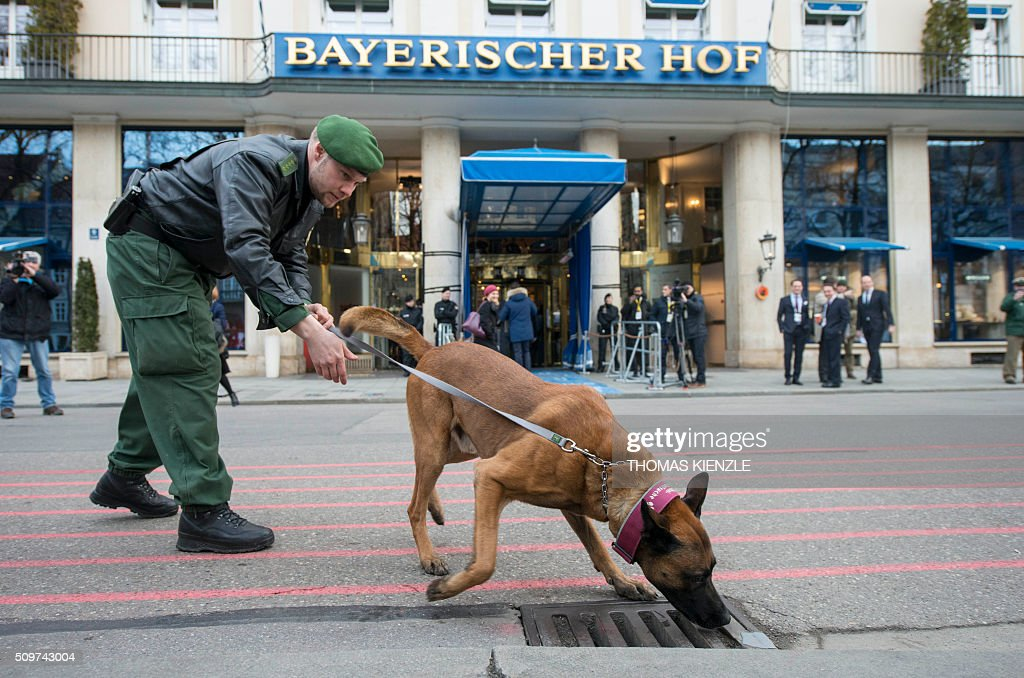 Police dog Kanis sniffs at a manhole cover as security measures are executed in front of the Bayerischer Hof hotel, venue of the 52nd Munich Security Conference (MSC), prior to the start of the conference in Munich, southern Germany, on February 12, 2016. The Munich Security Conference takes place here until February 14, 2016. / AFP / THOMAS KIENZLE