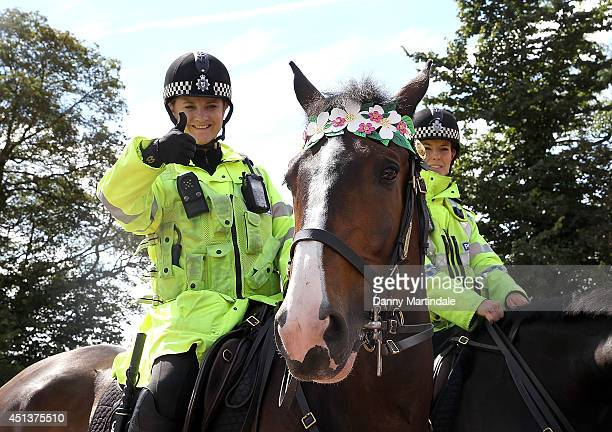 Police horses get in the spirit at the Glastonbury Festival at Worthy Farm on June 28 2014 in Glastonbury England