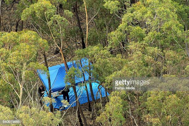 Police investigate the site where human remains were found at Belanglo State Forest in the Southern Highlands of NSW