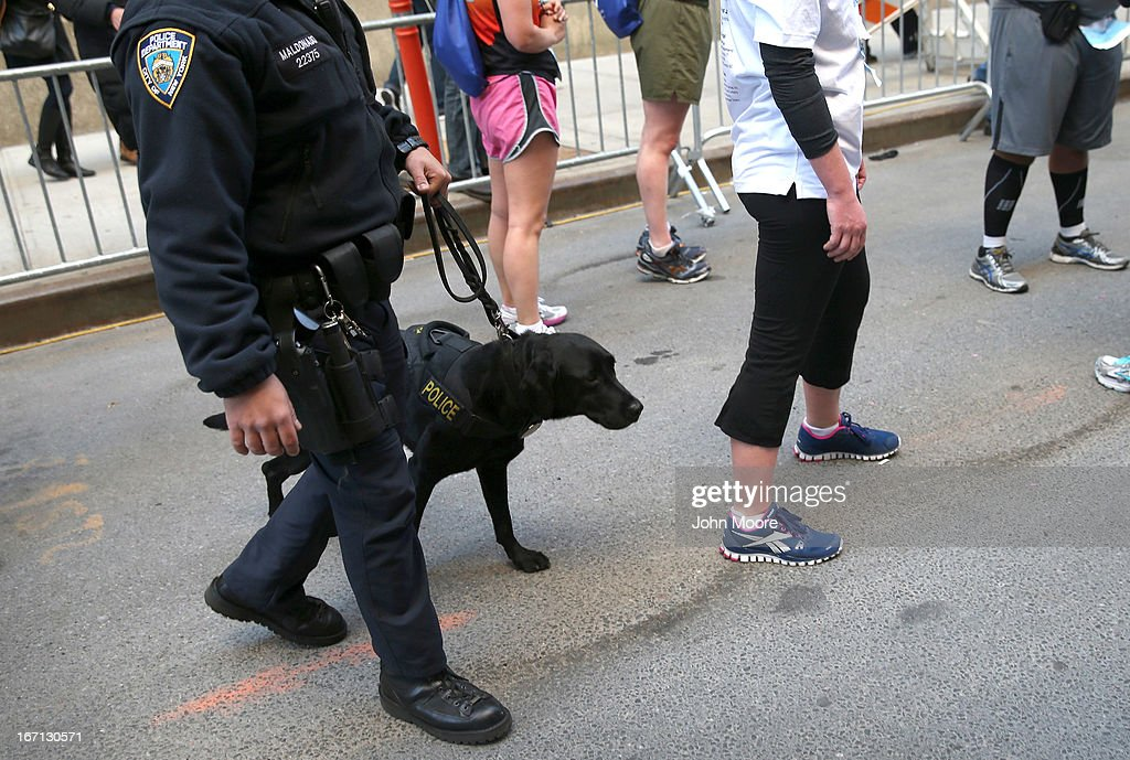 A police K-9 unit stands at the end of the first annual 9/11 Memorial 5K Run/Walk on April 21, 2013 in New York City. Security was tight for the race, as has been the case in large scale events around the country since the Boston Marathon bombings. April 21 marks the anniversary that President Barack Obama signed into law legislation making 9/11 a day of service and volunteerism in memory of the victims of the 2001 attacks.
