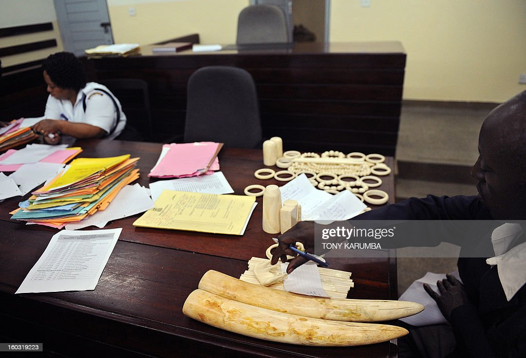 A police officer catalogues illegal ivory ornaments and tusks found in the possesion of Chinese nationals [not pictured] Qu Rongjun, Liu Xuefeng, Gu Guisheng and Wang Chengbang in a courtin January 29, 2013 in Nairobi. The four Chinese men who pleaded guilty to smuggling thousands of dollars worth of ivory were handed fines of just $340 each. The four men were arrested on Sunday carrying ivory products including 40 chopsticks, six necklaces, bracelets and a pen holder, as well as two pieces of raw ivory weighing 9.6 kilogrammes; the raw ivory alone carrying an estimated black market value of value $24,000 in Asia. AFP PHOTO/Tony KARUMBA