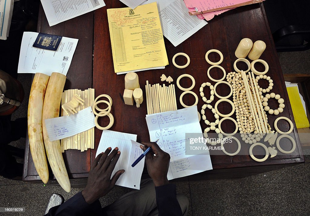 A police officer catalogues illegal ivory ornaments and tusks found in the possesion of Chinese nationals [not pictured] Qu Rongjun, Liu Xuefeng, Gu Guisheng and Wang Chengbang in a courton January 29, 2013 in Nairobi. The four Chinese men who pleaded guilty to smuggling thousands of dollars worth of ivory were handed fines of just $340 each. The four men were arrested on Sunday carrying ivory products including 40 chopsticks, six necklaces, bracelets and a pen holder, as well as two pieces of raw ivory weighing 9.6 kilogrammes; the raw ivory alone carrying an estimated black market value of value $24,000 in Asia. AFP PHOTO/Tony KARUMBA