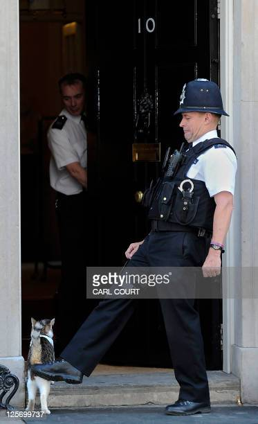 A police officer encourages 'Larry' the Downing Street cat into 10 Downing Street before a photocall involving British Prime Minister David Cameron...