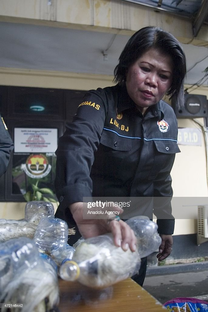 A police officer shows animals successfully secured from illegal wildlife trading in Surabaya East Java Indonesia on May 04 2015 A total of 24...