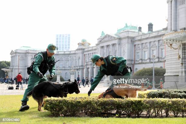 Police officers check with sniffer dogs ahead of the visit by US President Donald Trump at the Akasaka State Guest House on November 4 2017 in Tokyo...