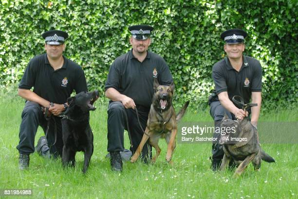 Police officers with Avon and Somerset Police have been learning to speak Dutch after recruiting three dogs from Holland who refused to respond to...
