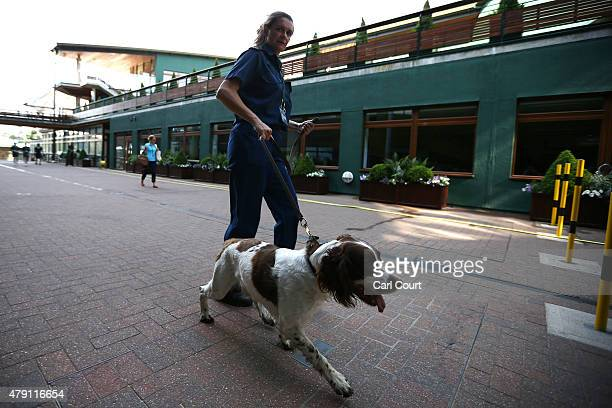 A police search dog is led between courts ahead of play on day three at Wimbledon on July 1 2015 in London England The 129th tournament to be hosted...