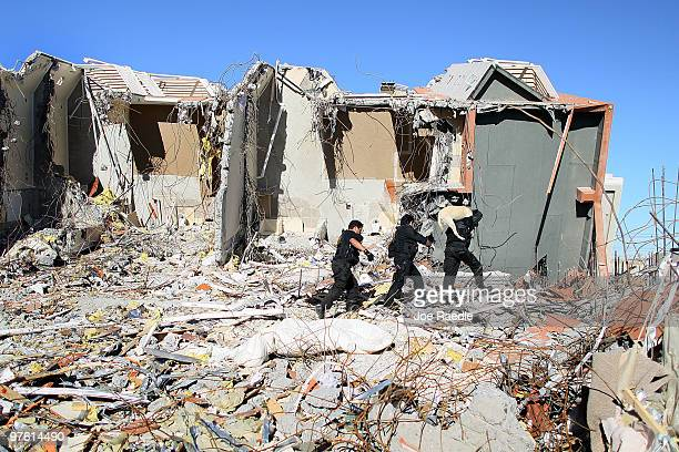 A police search team uses their dogs to search for bodies in a 15story apartment building that collapsed during the February 27th earthquake March 10...