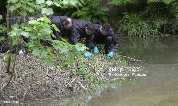 Police search the scene in Summerfields Wood in Hastings where body parts where found buried in the search for clues into the Murder of Rev Ronald...