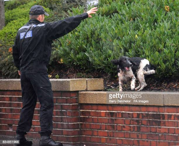 Police with a sniffer dog near Driverline 247 on New Road at New Inn Pontypool South Wales