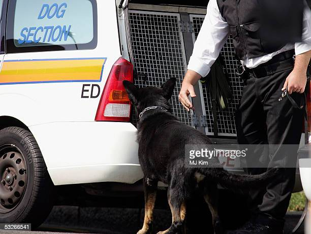 A policeman arrives with a sniffer dog outside Shepherd's Bush undergournd station on July 21 2005 in London Three London underground train stations...