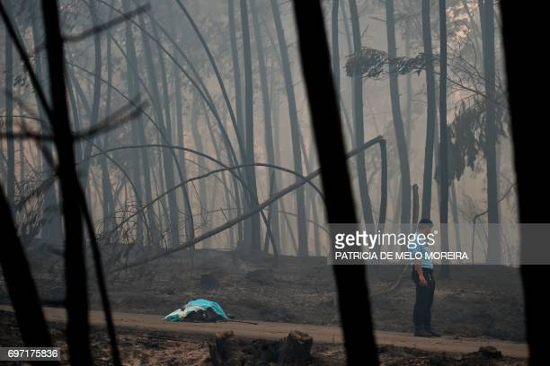 TOPSHOT A policeman stands by a dead body of a victim of a wildfire in Pedrogao on June 18 2017 A wildfire in central Portugal killed at least 57...