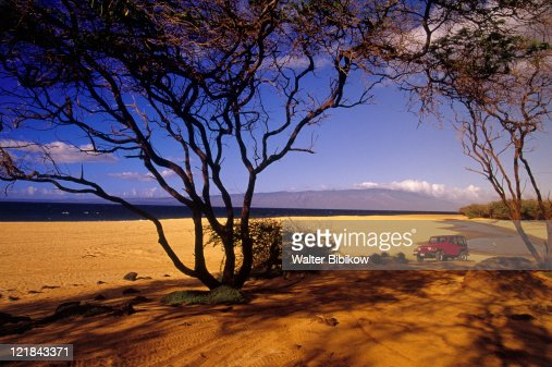 Polihua beach, Hawaii : Stock Photo