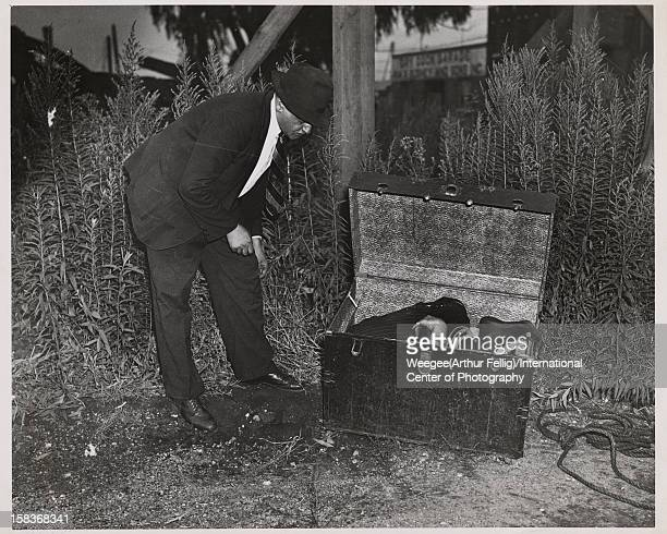 Polishborn American photographer Arthur 'Weegee' Fellig peers into an opened steamer trunk that contains the bound body of a murder victim Brooklyn...
