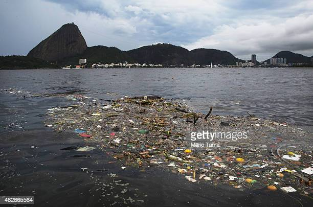 Pollution floats in Guanabara Bay on February 6 2015 in Rio de Janeiro Brazil The city is gearing up to host the Rio 2016 Olympic Games
