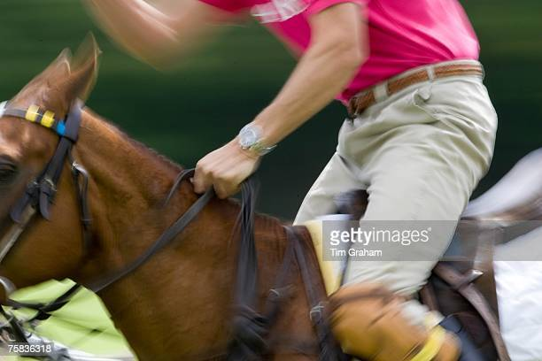 Polo match in Hampshire England United Kingdom