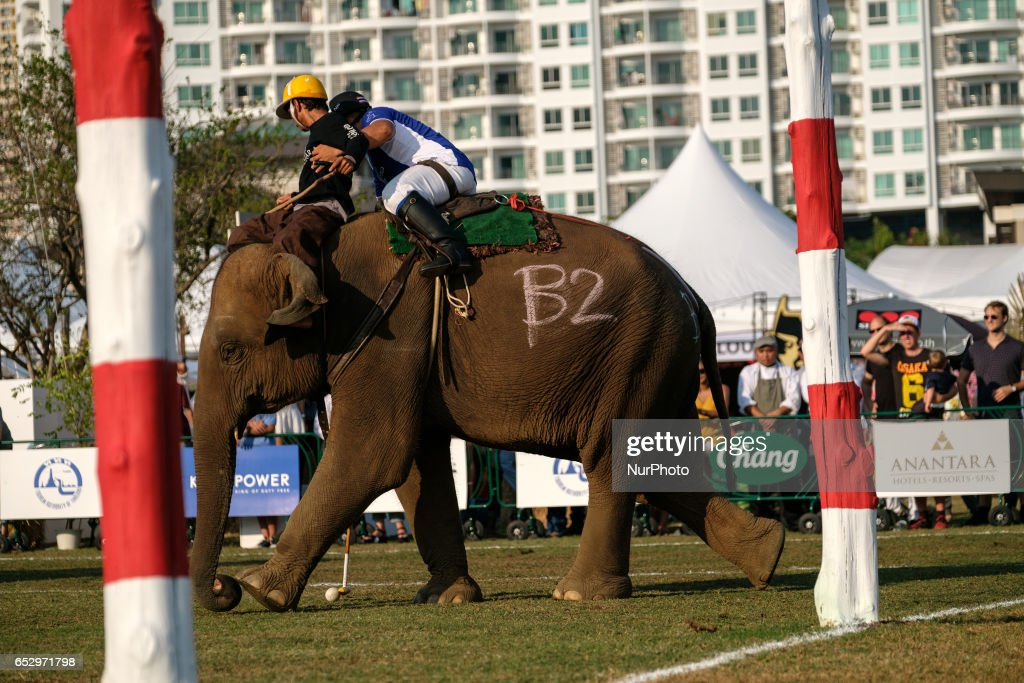 A Polo player rides an elephant during the 2017 King's Cup Elephant Polo tournament at Anantara Chaopraya Resort in Bangkok, Thailand on March 12, 2017. The King's Cup Elephant Polo is one of the biggest annual charity events in Thailand. Since the first tournament, originally held in the seaside town of Hua Hin, 50 street elephants have been rescued. The annual event allows for a further 20 young elephants to be taken off the streets for the duration of the tournament, providing them with the best food possible, as well as the only proper veterinary check they receive all year.Elephants are a proud cultural symbol of Thailand's history.