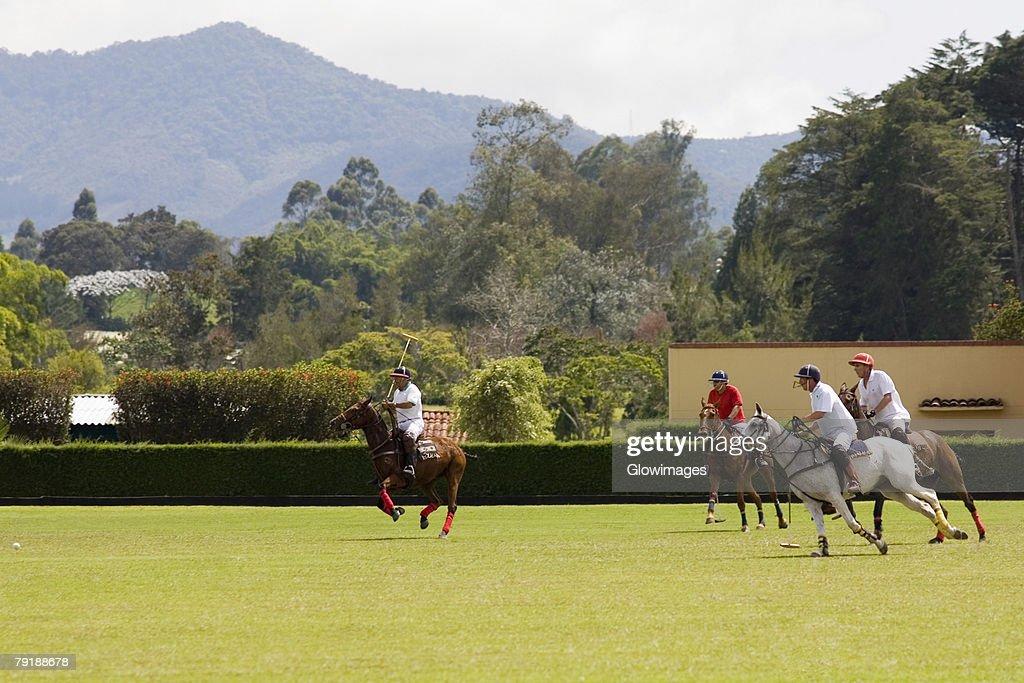 Polo players playing a polo match : Foto de stock