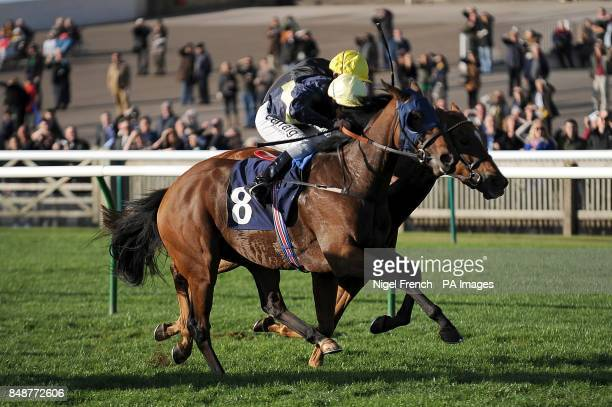 Polygon ridden by Michael Hills wins the TRM Severals Stakes ahead of Dorcas Lane ridden by Ted Durcan