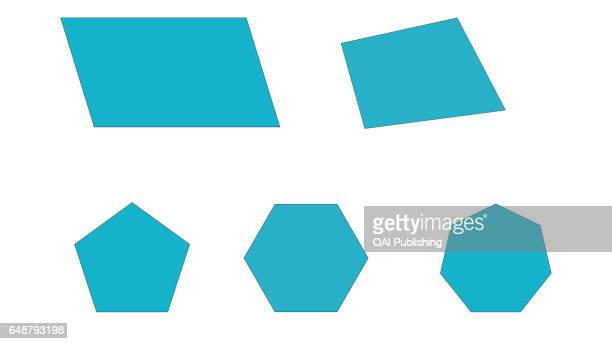 Polygon Those are some polygons which are geometric plane figures with several sides and a number of equal angles