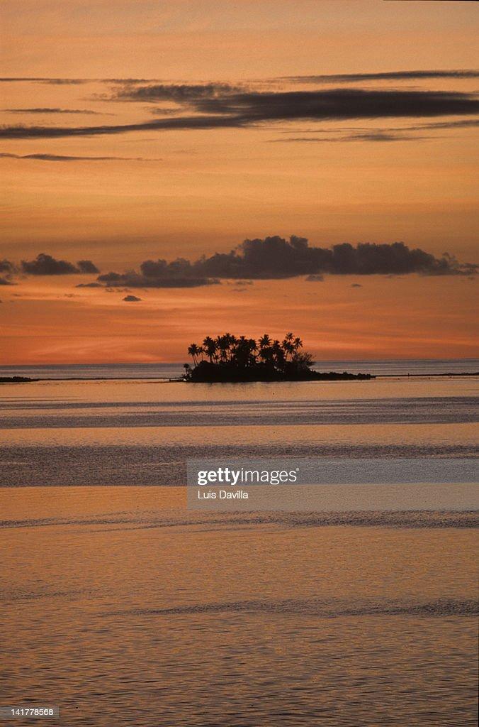 polynesia : Stock Photo