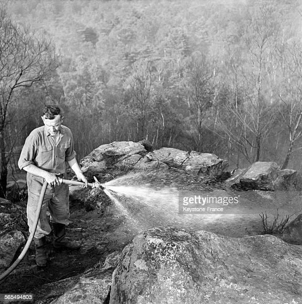 Pompier combattant le feu à la lance à incendie depuis un point haut du bois France circa 1960