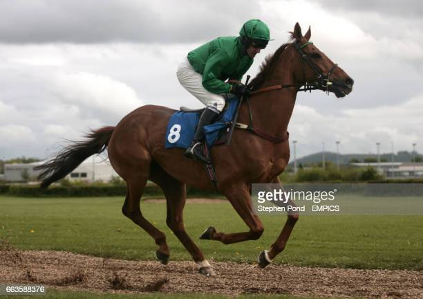 PonchaTrain ridden by Warren Marston going to post for the Rose Lion In Bromyard Novices' Handicap Hurdle