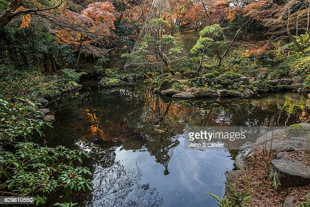 Pond at Tonogayato Garden is a landscape type garden in Kokubunji Tokyo built for the vicepresident of Manchurian Railway and is now owned by Tokyo...