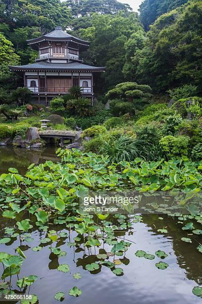 Pond Garden at Komyoji Tenshozan Rengein Komyoji is usually referred to only as Komyoji a Buddhist temple of the Jodo sect in Kamakura The temple is...