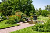 Pond in Ornamental Garden