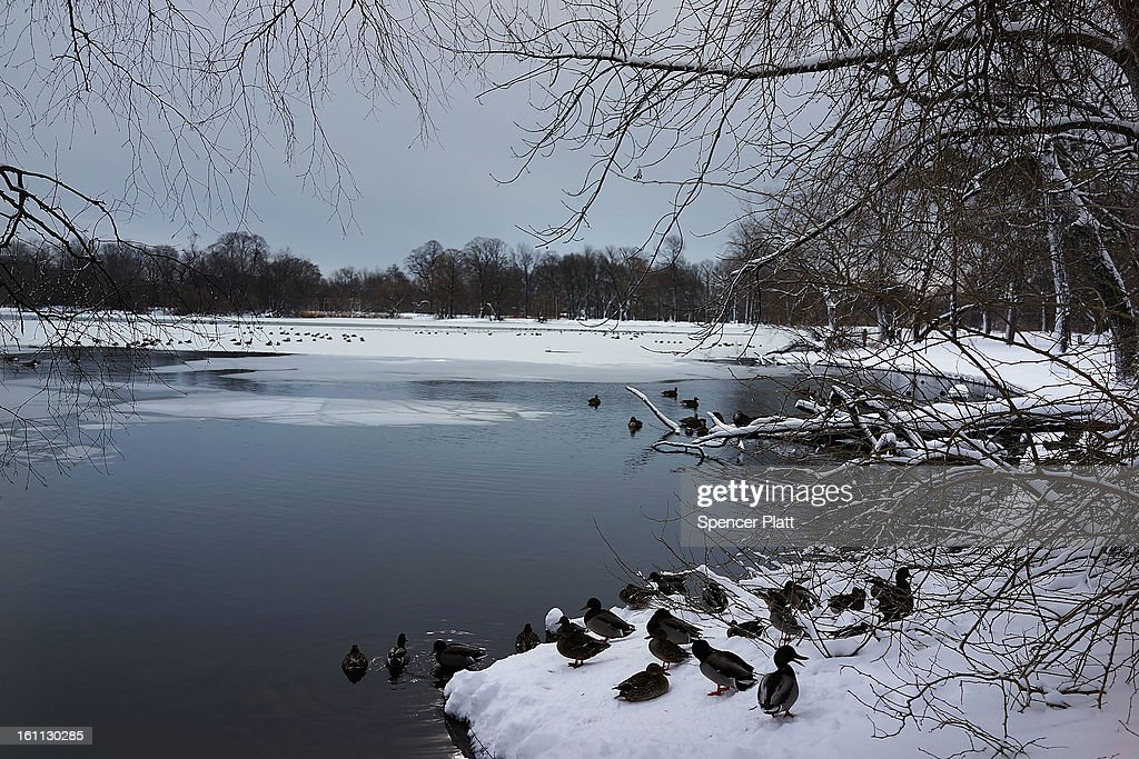 A pond is viewed in Prospect Park in Brooklyn the morning after a massive snow storm on February 9, 2013 in New York City. New Yorkers woke up to over 10 inches of snow Saturday morning while parts of New England received over thirty inches following a storm that brought high winds and blizzard like conditions to the region.