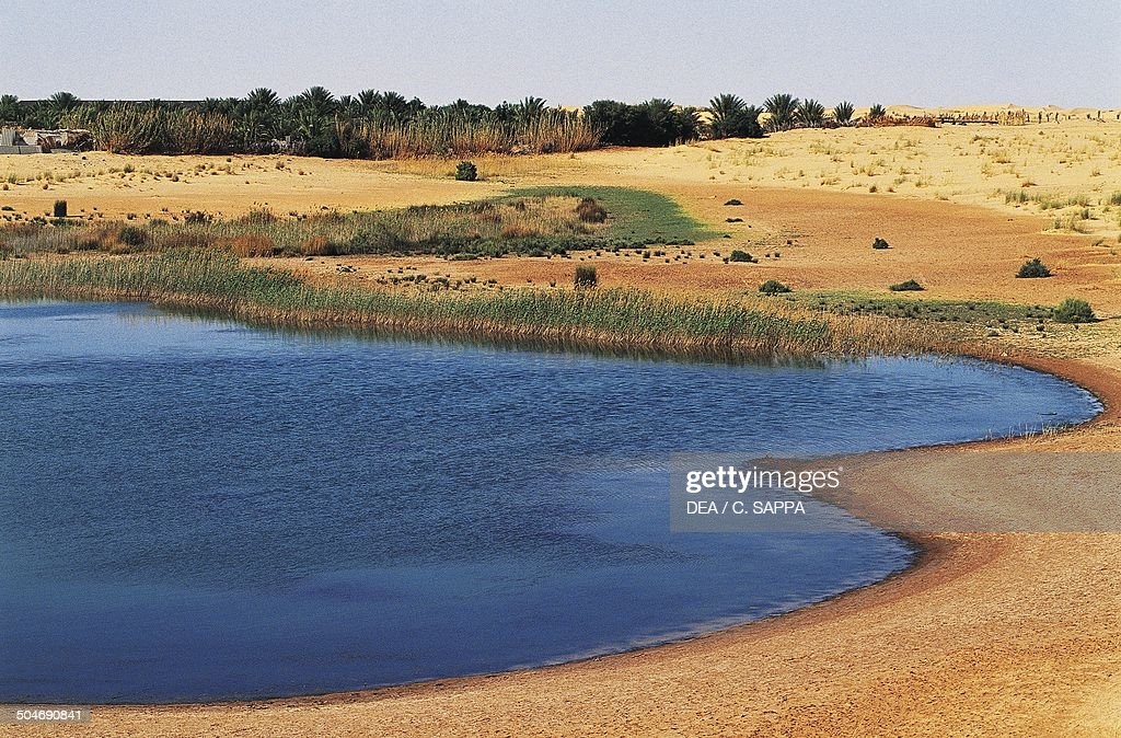 Pond of fresh water in an oasis El Oued Sahara Desert Algeria