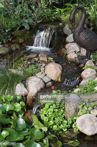 Pond with waterfall feature,